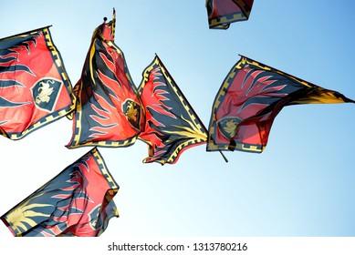 Flags race on the sky