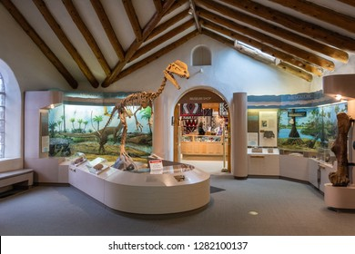 Flagstaff, Arizona, United States of America - January 5, 2017. Interior view of the Museum of Northern Arizona in Flagstaff, with dinosaur skeleton and exhibits.