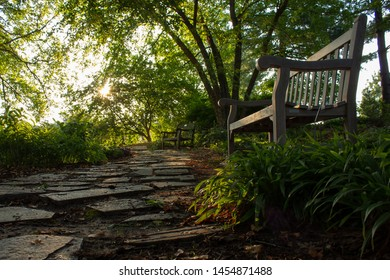 Flagstone path in garden with benches and sunrise showing though trees in background. Picture taken at ground level.