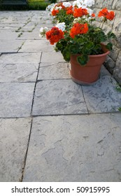 A flagstone patio with a number of geraniums in clay pots lining the corner of the image