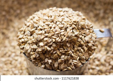 Flakes grains barley,Home brew,craft beer.