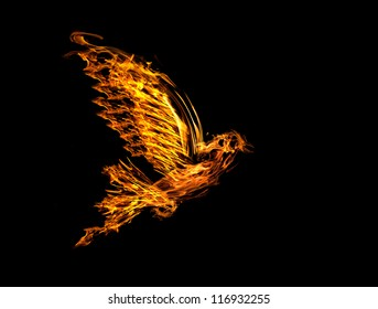 flame flying dove isolated on black background