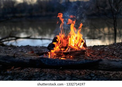 Flame red bonfire by the river in the evening forest in spring