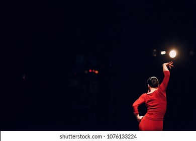 Flamenco. Performance on stage.