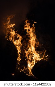 Flames of a bonfire in the night. Fire flames on a black background