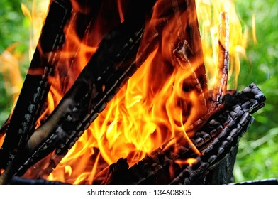 Flames burning in a barbecue standing in a pretty garden as the coals are prepared for grilling an array of meat for a lunchtime cookout .Burning wood and coal in fireplace .