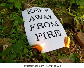 Flames burning a charred piece of firewood and leaping to a burned piece of paper with ruffled ash edges