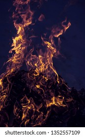 Flames from a campfire burning hot at night.