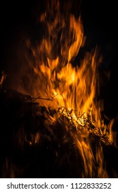 Flames of a campfire in the night. Fire flames on a black background