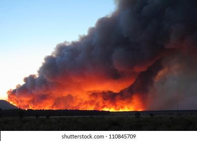 Flames and smoke column Castrocontrigo wildfire, Leon, started August 19, 2012