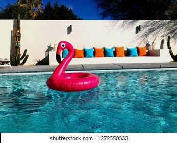 Flamingo Floatie in Pool