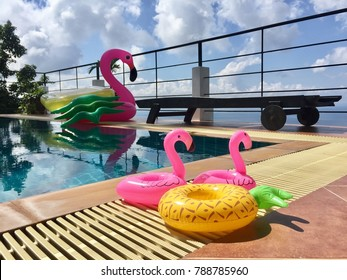 Flamingo pineapple floating beside swimming pool in sunny day