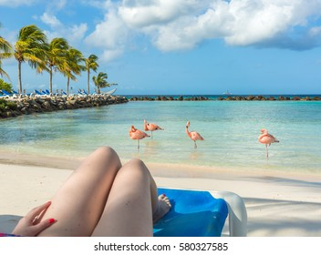 Flamingos beach in Aruba. Young woman resting
