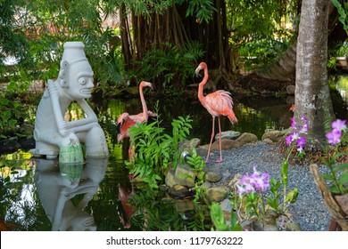 Flamingos in the caribbean
