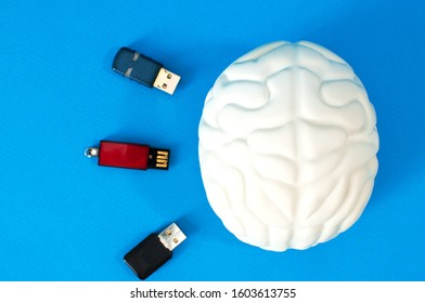 flash card in the brain