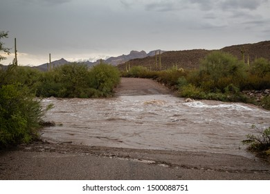 Flash flooding on a desert arroyo after a strong Monsoon Season thunderstorm blocks the Ajo Mountain Scenic Drive in Organ Pipe Cactus National Monument, Pima County, Arizona, USA
