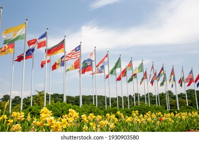 Flashing in the clear sky, the world's national flag is a picture of a high resolution editing image source Album book cover design composite editing source