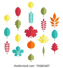 Flat illustration: Silhouettes of tree leaves (elm, beech, ash, linden, birch, alder, aspen, willow, maple,  poplar, rowan, hawthorn, walnut, apple, oak, acacia, chestnut, conker) on white background