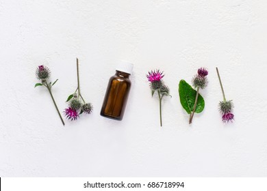 flat lay  burdock  Essential oil In small bottle. Spikes of flowers and leaves on a white background