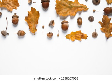 Flat lay composition with autumn leaves on white background. Space for text