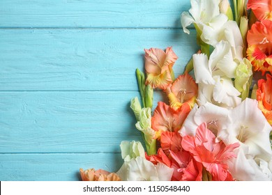 Flat lay composition with beautiful gladiolus flowers on wooden background