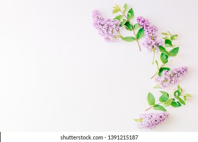 Flat lay composition with branches of lilac and branches with green leaves on a white background