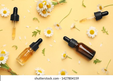 Flat lay composition with chamomile flowers and cosmetic bottles of essential oil on color background