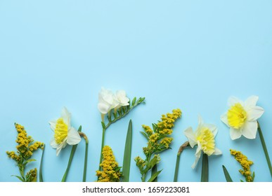Flat lay composition with spring flowers on light blue background. Space for text