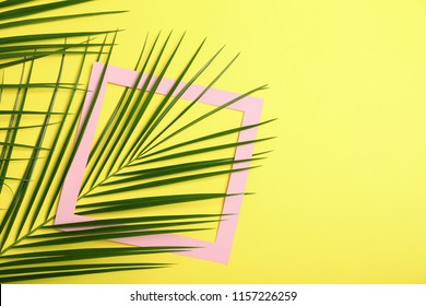 Flat lay composition with tropical leaves on color background
