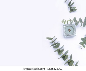 Flat lay. Copy space with Candle in glass packaging decorated with eucalyptus leaves isolated