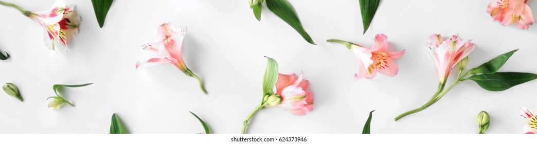 Flat lay floral pattern made of pink alstroemeria, leaves and petals on white background. top view