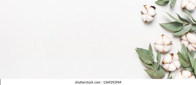 Flaches Blumenmuster aus Laien. Baumwollblumen und frische Eukalyptuszweige auf hellgrauem Hintergrund. Draufsicht, Kopienraum. Delikate weiße Baumwollblumen. Blumenhintergrund, Grußkarte