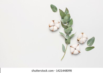 Flat lay flowers composition. Cotton flowers and fresh eucalyptus twigs on light gray background. Top view, copy space. Delicate white cotton flowers. Floral background, greeting card
