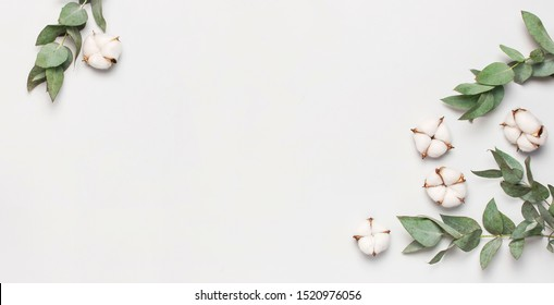 Flat lay flowers composition. Frame made of cotton flowers and fresh eucalyptus twigs on light gray background. Top view, copy space. Delicate white cotton flowers. Floral background, greeting card