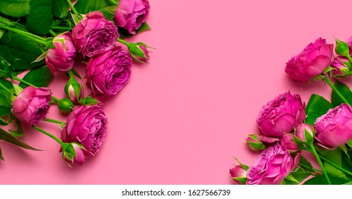 Flat lay flowers composition. Frame made of pink rose flowers on pink background top view copy space. Greeting card for Birthday, Womens or Mothers Day, March 8, Valentine's Day, wedding