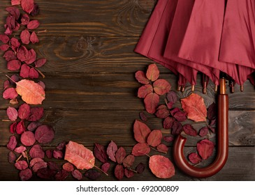 Flat lay frame of autumn crimson leaves and umbrella burgundy color on a dark wooden background. Selective focus.