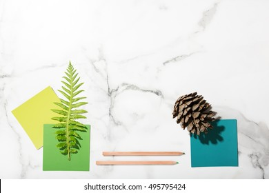 Flat lay interior mood board of green color swatches, pencils, fern and pine cone
