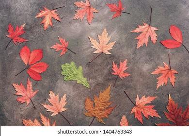 Flat lay multicolored autumn leaves. Creative fall layout.