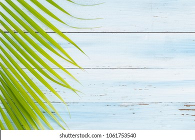 Flat lay photo coconut leaf on blue wood background , top view and copy space for montage your product