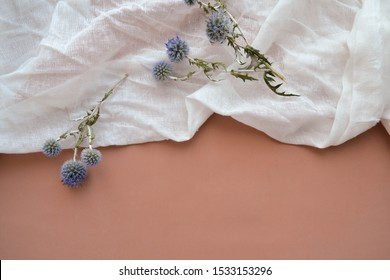 Flat lay photo concept of natural cotton gauze and dry blue eryngium planum flowers on soft pink background. Texture of white gauze fabric. Cheesecloth creative art composition clipart with copy space