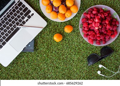 Flat lay of plates with berries and laptop keyboard with some other work objects on green grass. Top view.