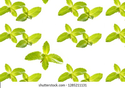 flat lay of  seamless pattern with  mint like background