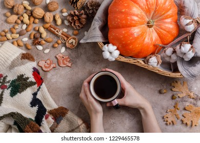 Flat lay style of autumn coffee, pumpkins and cinnamon sticks. Top view.