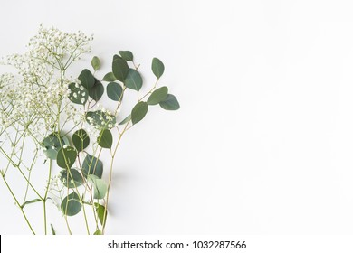 Flat lay top view photo. Mockup on a white background  with gentle flowers and plants. Cute feminine mock up. Blog header image. Blank space.
