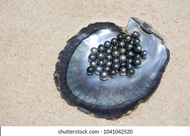 Flat lay view of excellent Round Tahitian Black Pearls on a Black lip oyster shell.