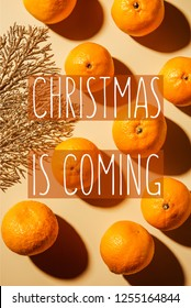 "Flat lay with wholesome mandarins and decorative golden twig on beige background with ""christmas is coming"" lettering"