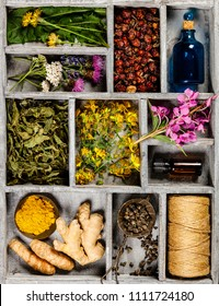Flat lay of wild healing herbs
