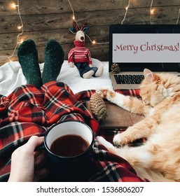 Flat lay winter cozy Christmas vintage background. Christmas atmospher. Cat and cup of tea or coffee.