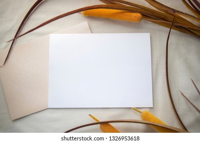 A flat white card with envelope surrounded by bullrush.