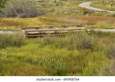 flat wooden walkway through prairie grass on a golf course